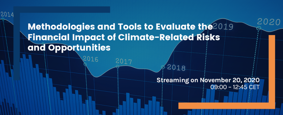 Methodologies and Tools to Evaluate the Financial Impact of Climate-Related Risks and Opportunities – FEEM